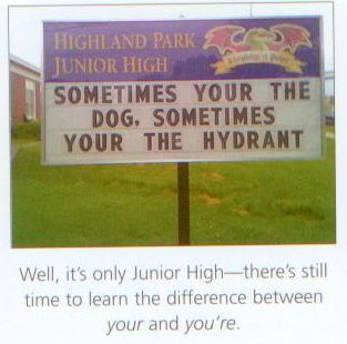 i-judge-you-grammar-x-dog-hydrant